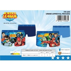 Pack de 2 Boxers JUSTICE LEAGUE 731-233
