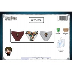 Pack de 3 Slips HARRY POTTER HP20-1308